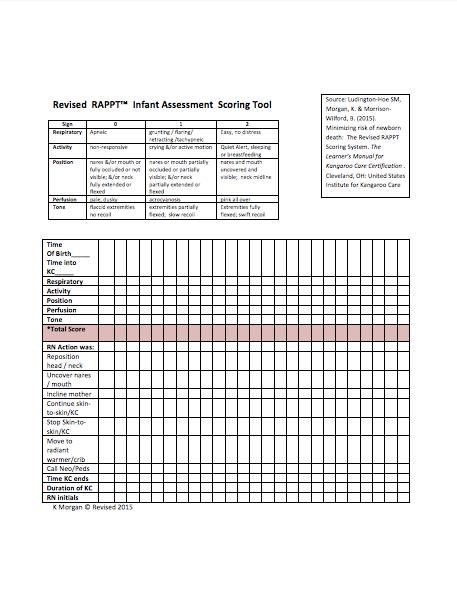 RAAPT-scoring-tool